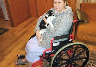 kobieta siedzi na wózku i trzyma kota na rękach